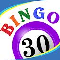 Bingo Thirty™ - Free Bingo 30 Game icon