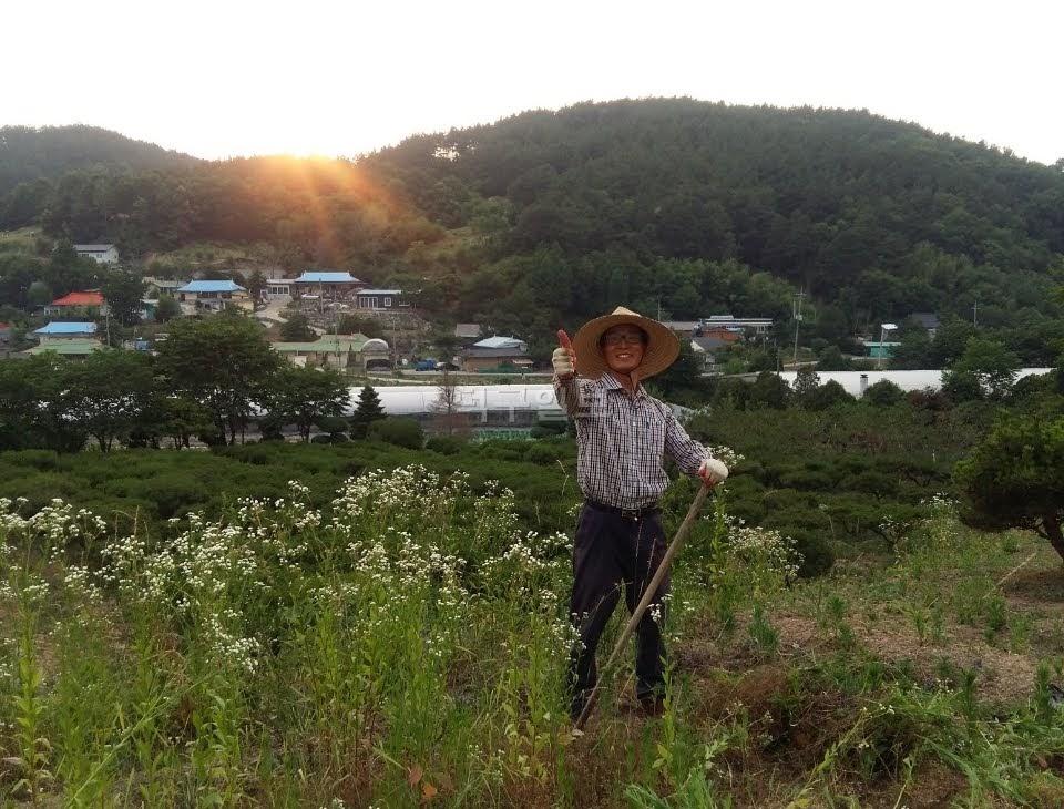 자연농법으로 농사를 짓는 최도현 님