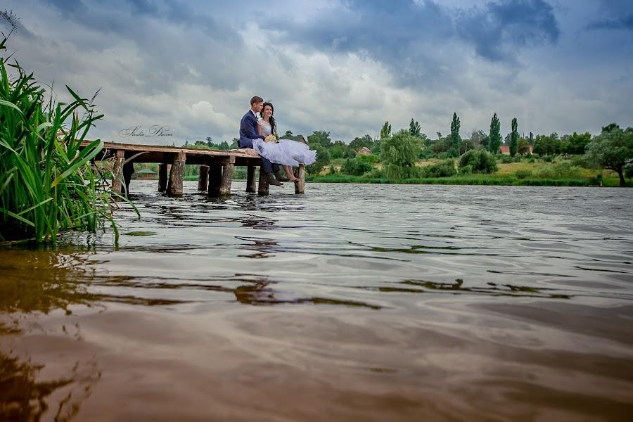 Свадебный фотограф Диана Тим (StudioDiana). Фотография от 06.10.2016
