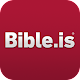 Bible: Dramatized Audio Bibles
