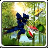 Ninja cat fruit