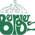 Bergies Cold Brew Coffee
