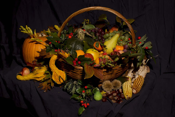 Un cesto d'autunno di lorisdiotti