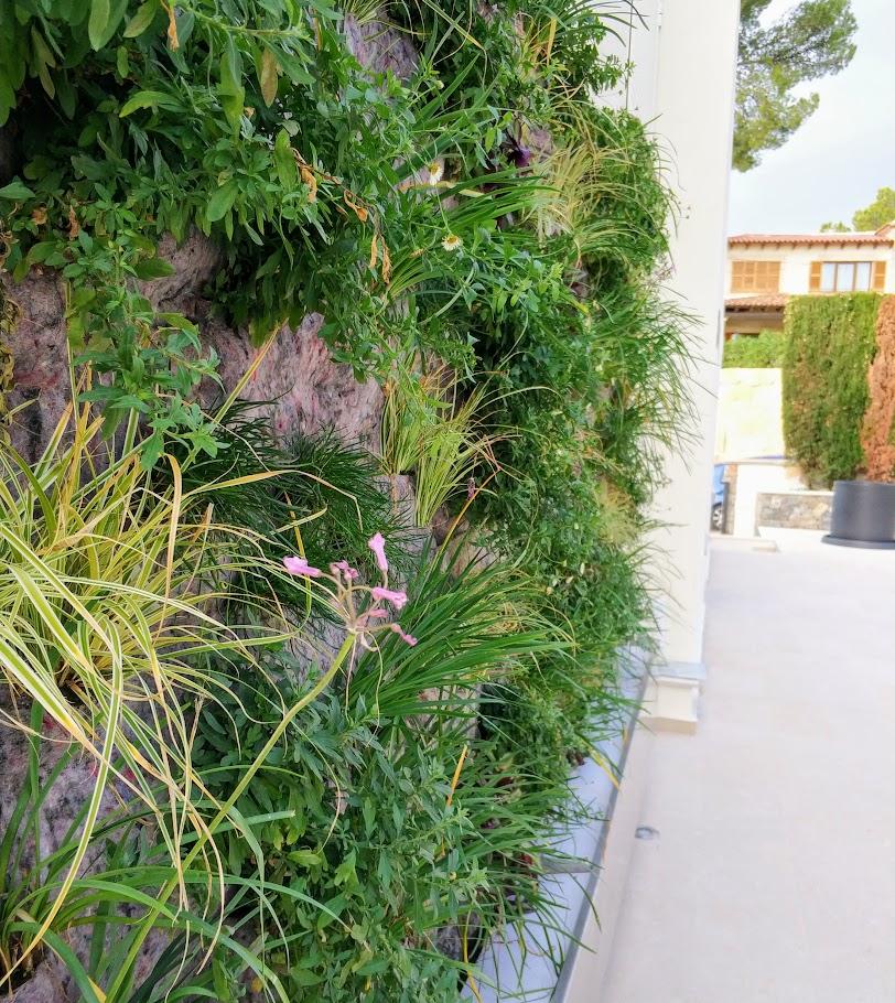 Jardines Verticales hidropónicos