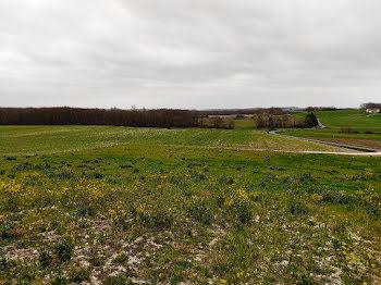 terrain à Flaugeac (24)