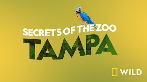 Secrets of the Zoo: Tampa thumbnail