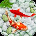 KOI Fish Live Wallpaper : New fish Wallpaper 2019 icon