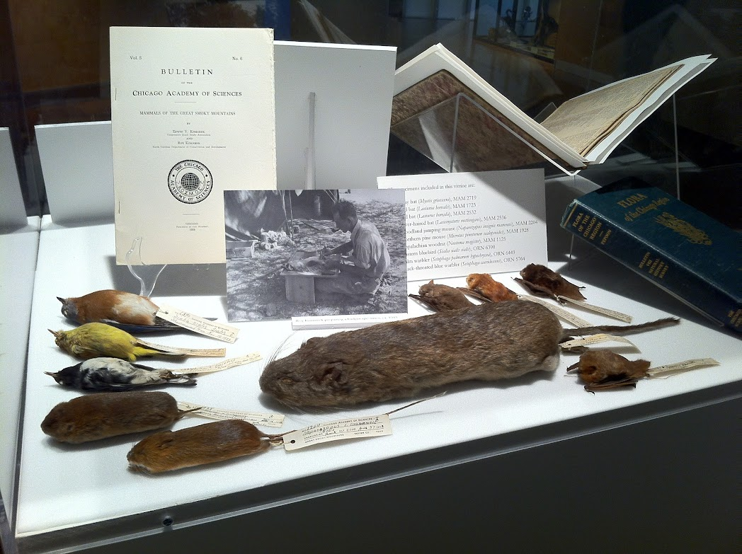 Specimens on display in Chicago's Explorers exhibit