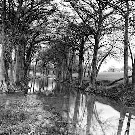 A river runs through it by Cathy Hood - Black & White Landscapes