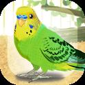 Parakeet Pet icon