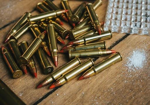 Gun Carrier Review | 22mag vs 17hmr