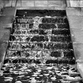 trickling water by Nic Scott - Nature Up Close Water ( water, monochrome, black and white,  )