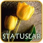 Watsap və Facebok üçün Stasuslar Icon