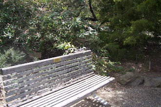Photo: Barry's Bench, in full sun most of the day, some shade in the afternoon