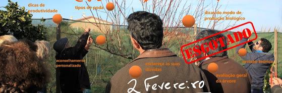 Poda em Árvores de Fruto 2019 – 19 Jan (Curso Básico 8ª edição) e 2 Fev (Curso Avançado 2ª edição)