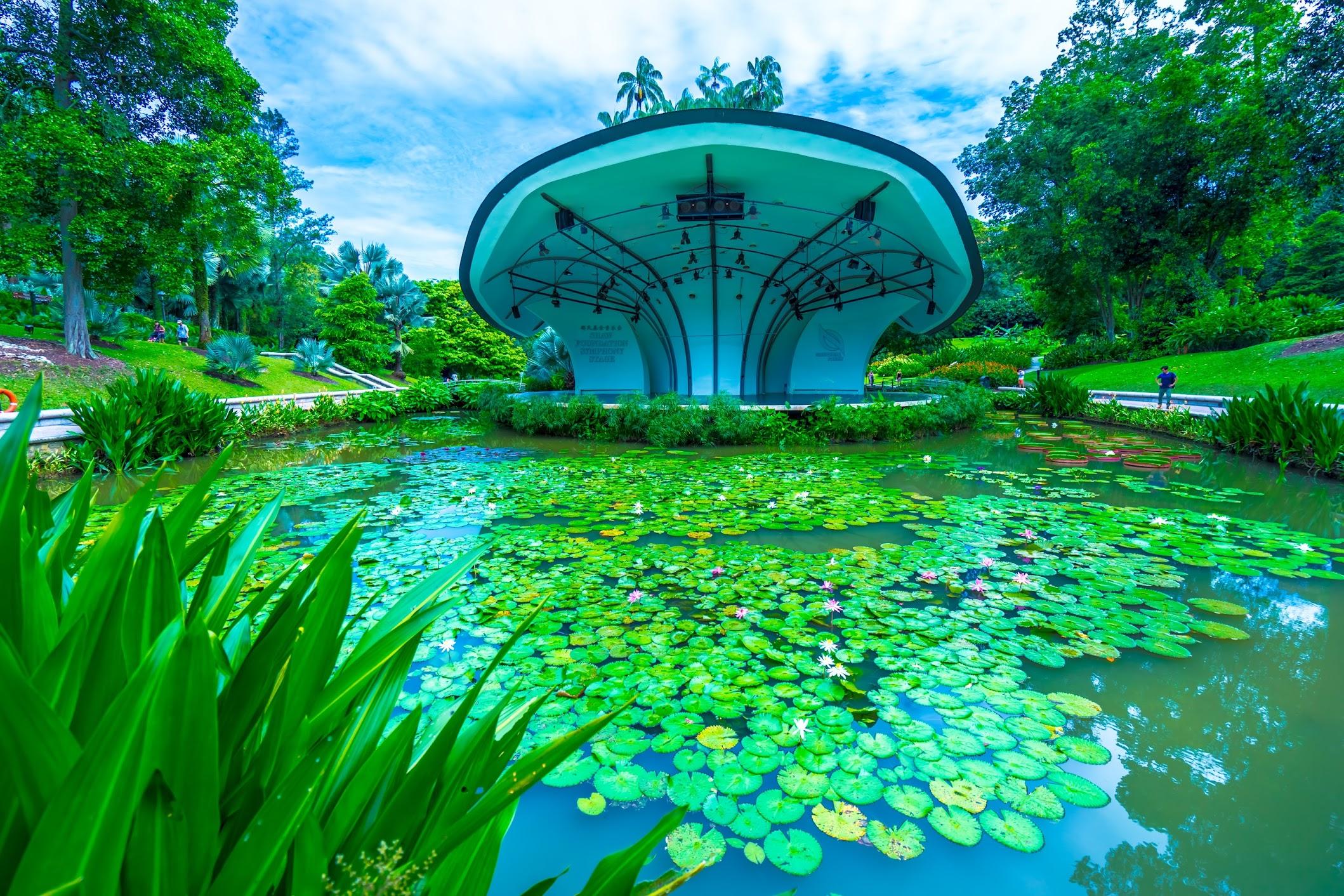 シンガポール植物園(ボタニック・ガーデン) シンフォニー・ステージ2