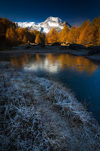 Photo: L'automne des souvenirs...
