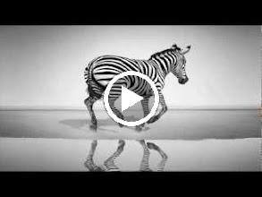 Video: A. Vivaldi  Orlando furioso (RV Anh. 84)   I-V Aria [Orlando]  Nel profondo, cieco mondo -