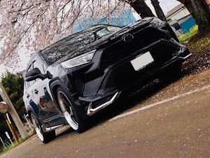 RAV4のカスタム事例画像 yuiさんの2020年03月30日17:21の投稿
