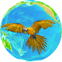 The Pacific Birds Songs icon