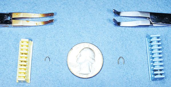 Comparison of a small hemoclip applicator, a medium hemoclip applicator and a US 25-cent coin