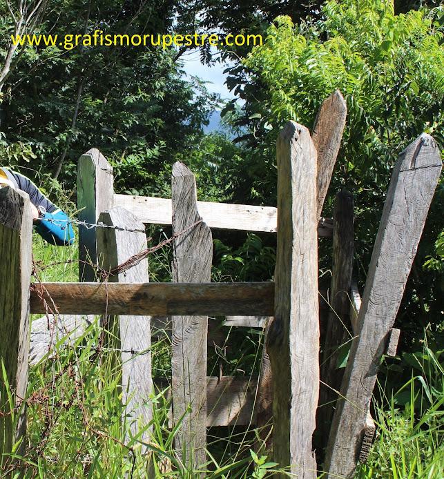 Siga a trilha mais demarcada pela esquerda entrando em um bosque, passe pelo quebra corpo na cerca.
