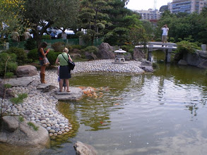Photo: Japanese Garden above the Bus Station in Monte Carlo