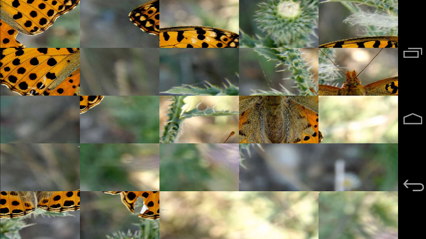 android Tile Puzzles · Butterflies Screenshot 1