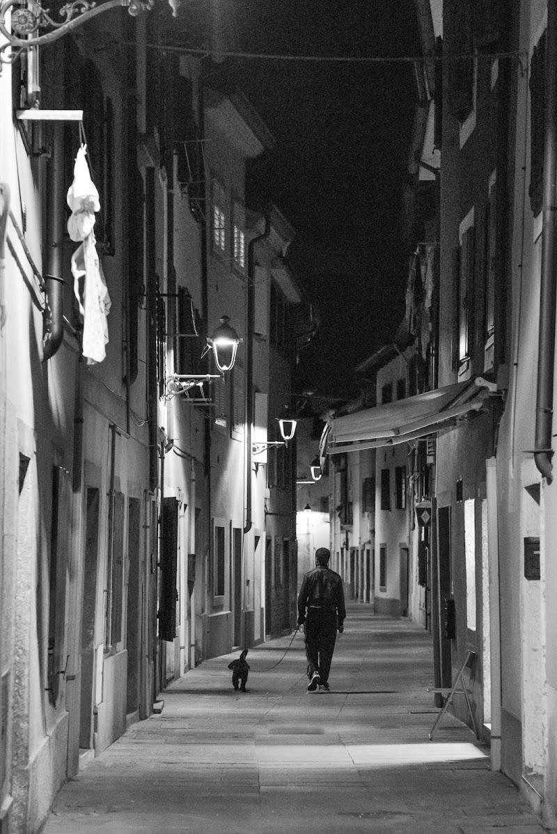 Passeggiata notturna di Peter_Sossi