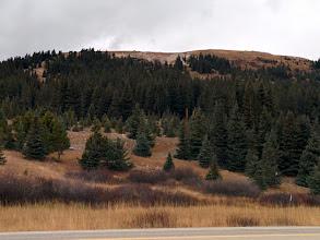Photo: I skied here in December, 1960--Climax Ski Area at the top of Fremont Pass. I think it closed after that year, but I don't think it was me. Wooden skis with screwed in metal edges; leather boots; we won't even mention the bindings....