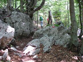 Photo: idemo dalje prema vrhu, još malo kroz šumu