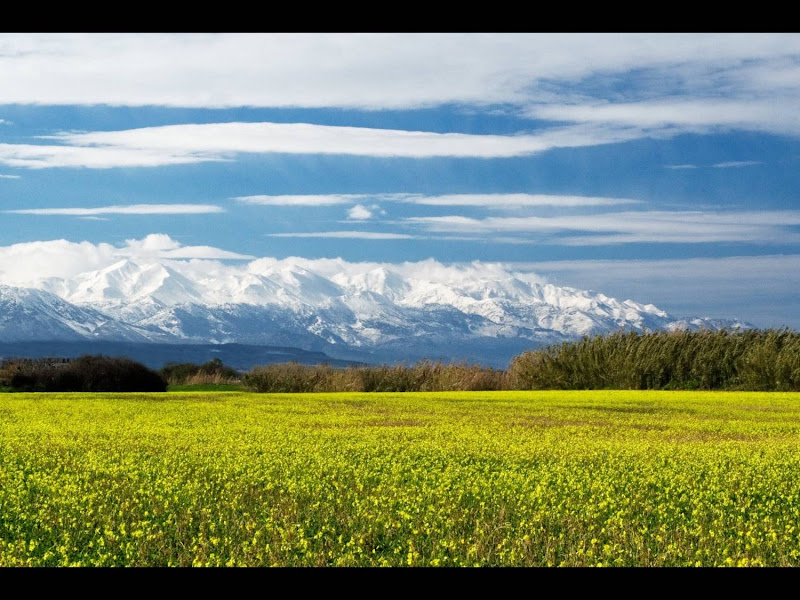 Witte bergen