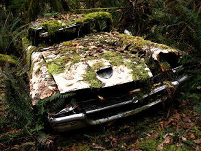 Photo: my forest eats cars  When wandering around these woods you wander around the remains of recent history. But it doesn't last long on the surface as foliage falls and moss grows...  this forest eats cars.  You've been warned ;)
