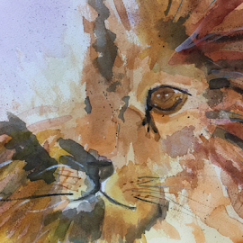 Lion by Jeanne Knoch - Painting All Painting