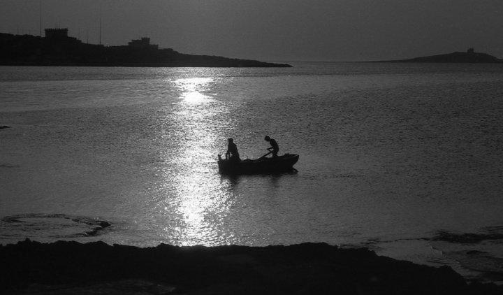 La pesca del polpo di luimag59