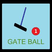 Gate Baro