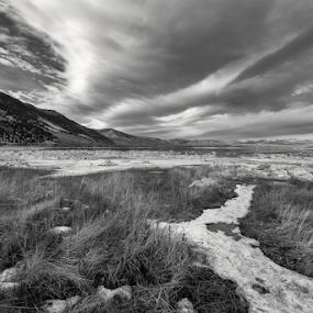 High Plains Drifter  by Michael Keel - Black & White Landscapes ( mountains, monochrome, grass, sierras, mono lake, snow, lakes, western )