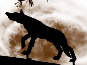 Photo: les aventures de deudeuche au pays des loups du gevaudan