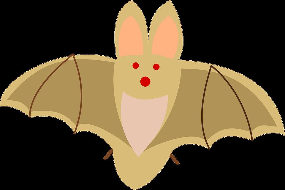 Free vector graphic: Bat, Dracula, Animal, Chiropteran - Free ...