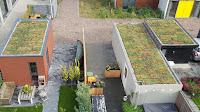 Steeds meer inwoners Drenthe en Overijssel vergroenen eigen omgeving