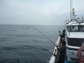 Photo: 潮は、結構走ってます! さあー、ウキ流し釣りスタートです!