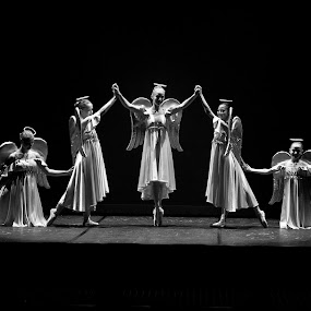 Nutcracker 1 by Don Chamblee - News & Events Entertainment