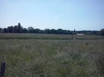 Terrain à bâtir 1800 m2