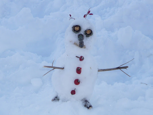 Omino di neve di Laucol