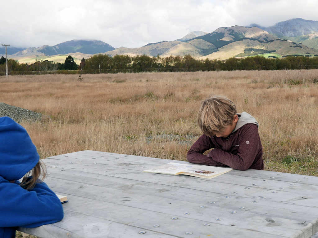 Children sitting on a wooden table out in a field reading books.