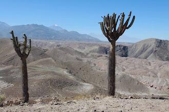 Photo: Vista desde la cima del volcan Volcan Nicholson Actividad 2012