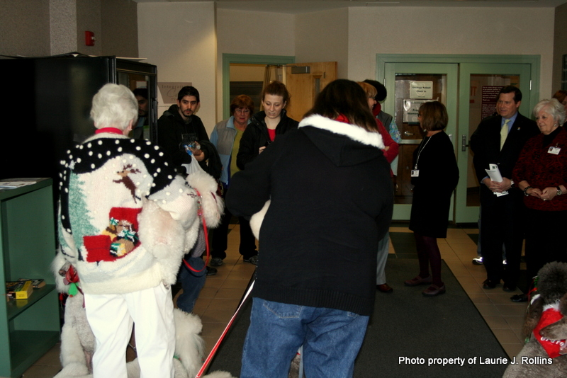 Photo: When nine poodles prance into a building, it doesn't take long for a crowd to form.