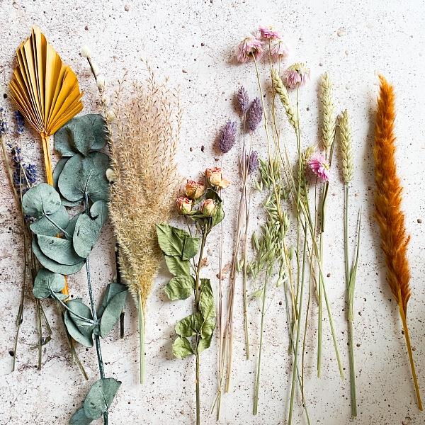 乾燥花製作-有哪些花材適合作為乾燥花