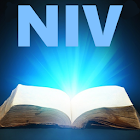 Bible NIV old and new testament icon
