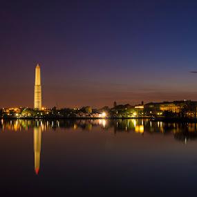 Standing Proud by John Goff - Buildings & Architecture Statues & Monuments ( cherry blossem festival )